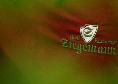 Logo-Stegemann